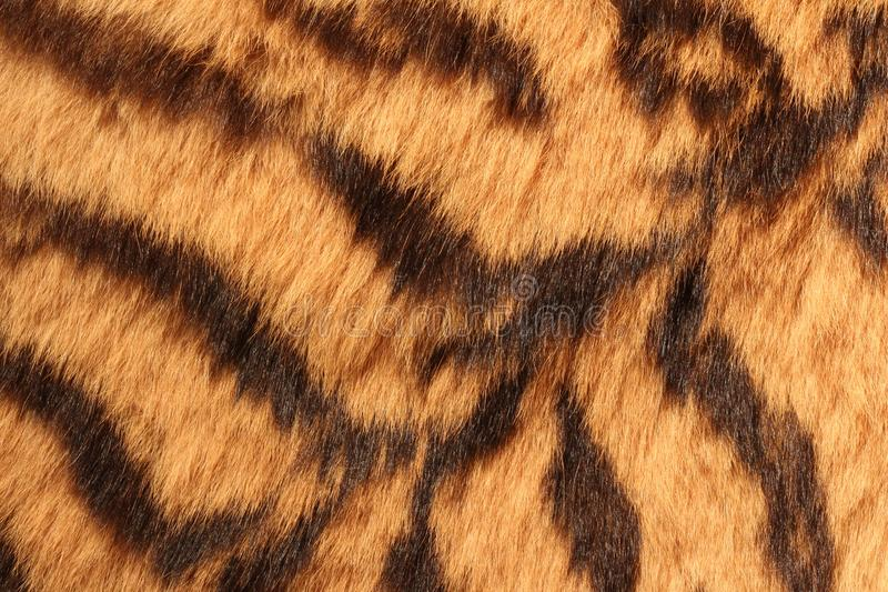 Fur of the tiger stock photo