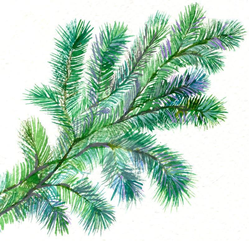 Fur-tree Branch Royalty Free Stock Image
