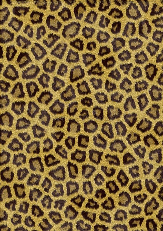 Download Fur of wild cat stock illustration. Illustration of design - 2378954