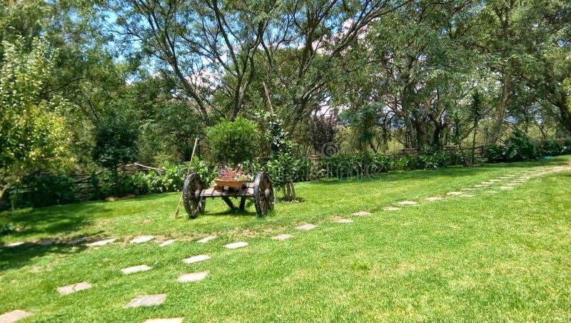 Fura w ogródzie zdjęcia stock