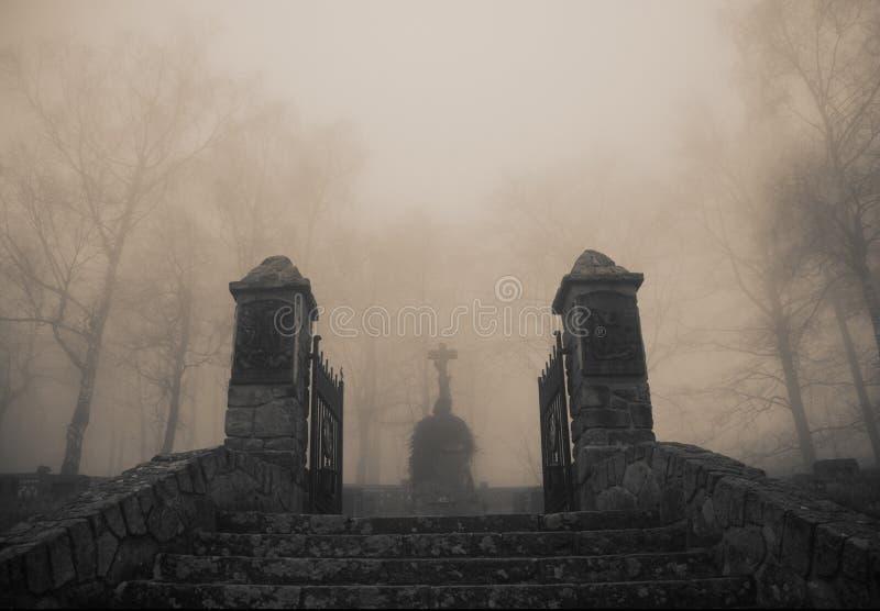 Furchtsamer alter Eingang zum Waldfriedhof im dichten Nebel lizenzfreie stockbilder