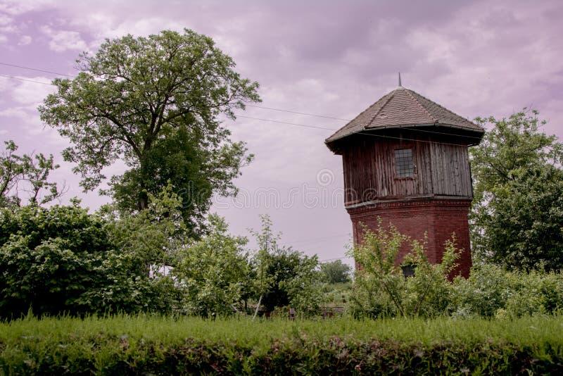 Furchtsamer lehnender Turm und ein Baum lizenzfreie stockfotos