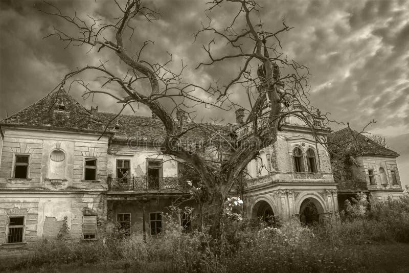 Furchtsames verlassenes Halloween-Palastschwarzweiß lizenzfreies stockfoto