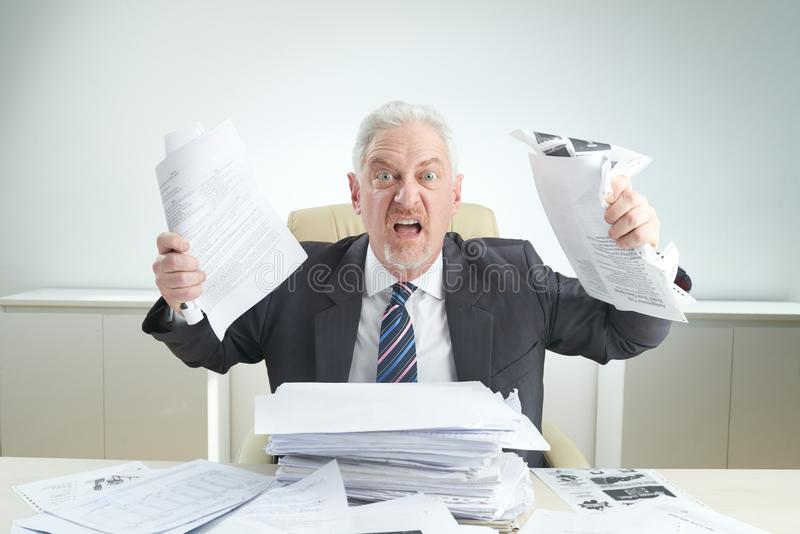 Furious Manager Overwhelmed by Work. Waist-up portrait of furious senior manager in formalwear looking at camera while holding documents in hands, office desk royalty free stock photography