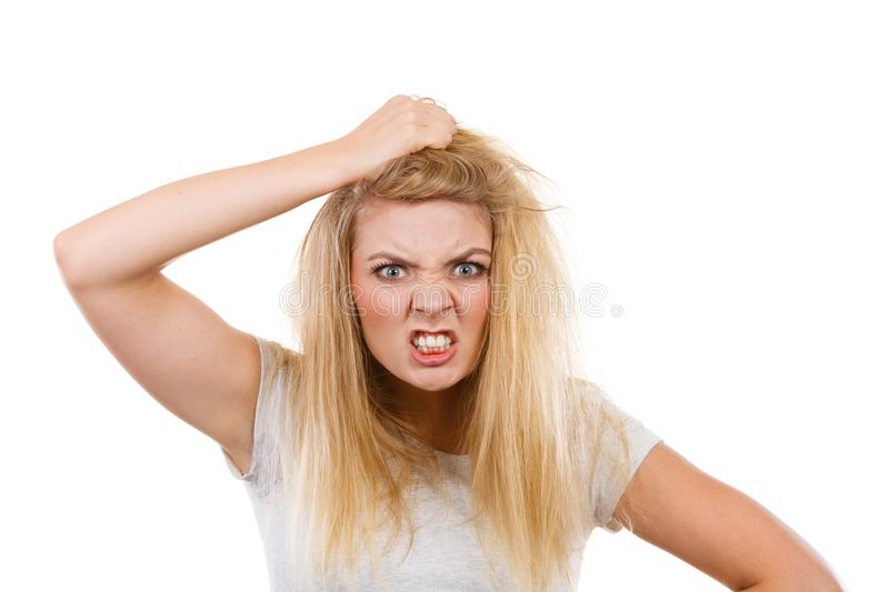 Furiously mad angry blonde woman holding hair. Emotions, face expression concept. Furiously mad angry blonde woman holding her hair. Studio shot on white royalty free stock image