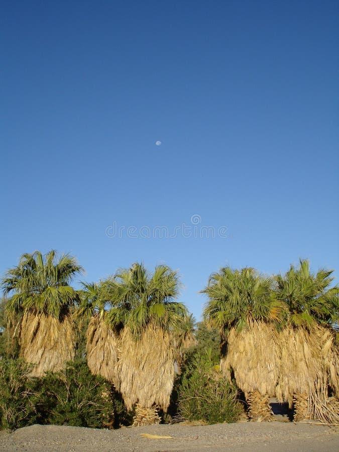 Download Furnace Creek Blue Skies Royalty Free Stock Photo - Image: 12510515