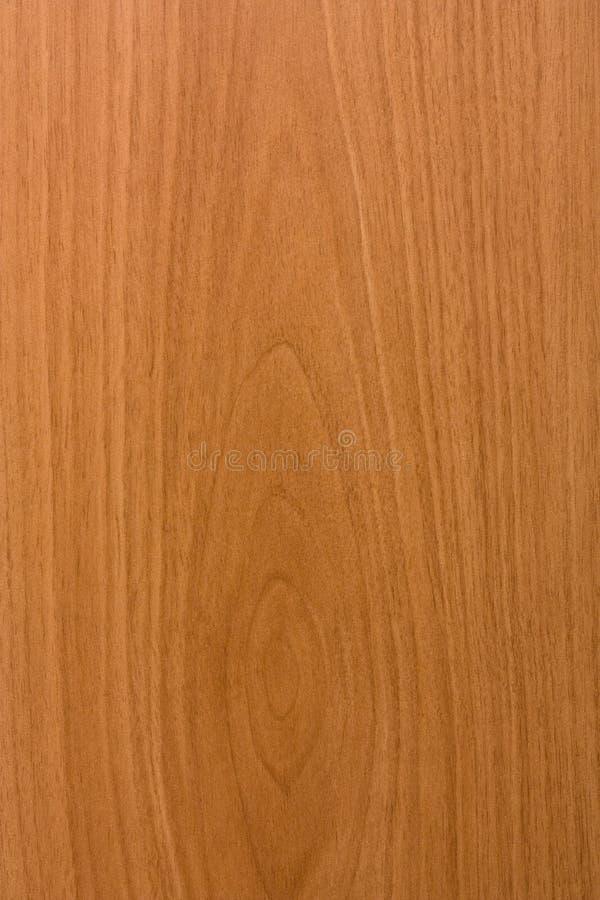 Furnier-Blattbeschaffenheit stockfoto