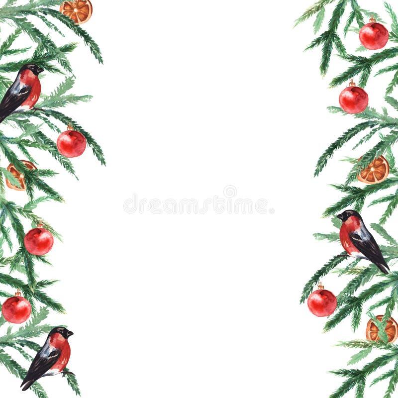 Furnierzweige grenzen mit Weihnachtsbällen und Bullfinen an Weihnachts- und Neujahrskarte, leer Wasserfarbe stock abbildung