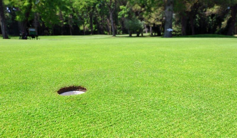 Furo do campo de golfe no verde de colocação imagem de stock royalty free