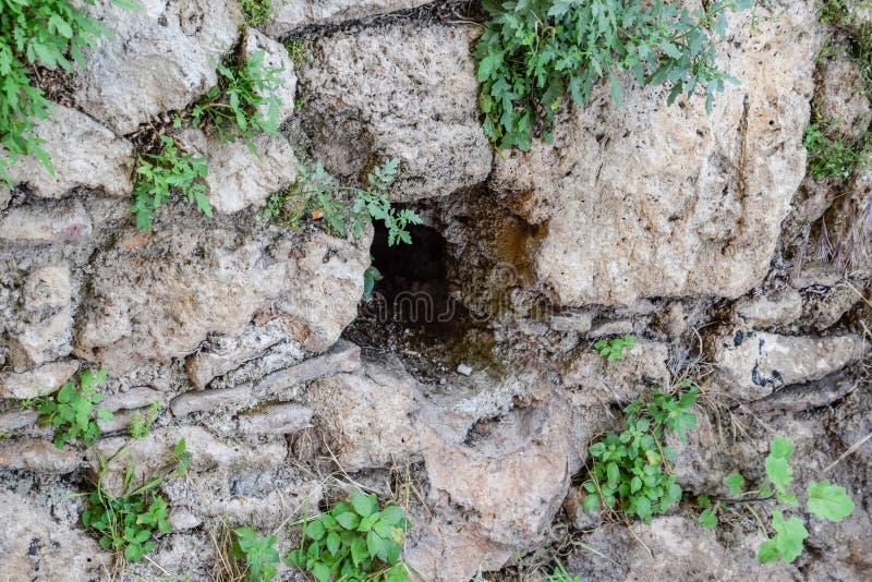 Furo na parede da pedra calcária fotos de stock