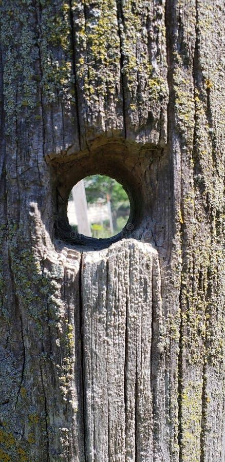 Furo no fencepost de madeira imagens de stock royalty free