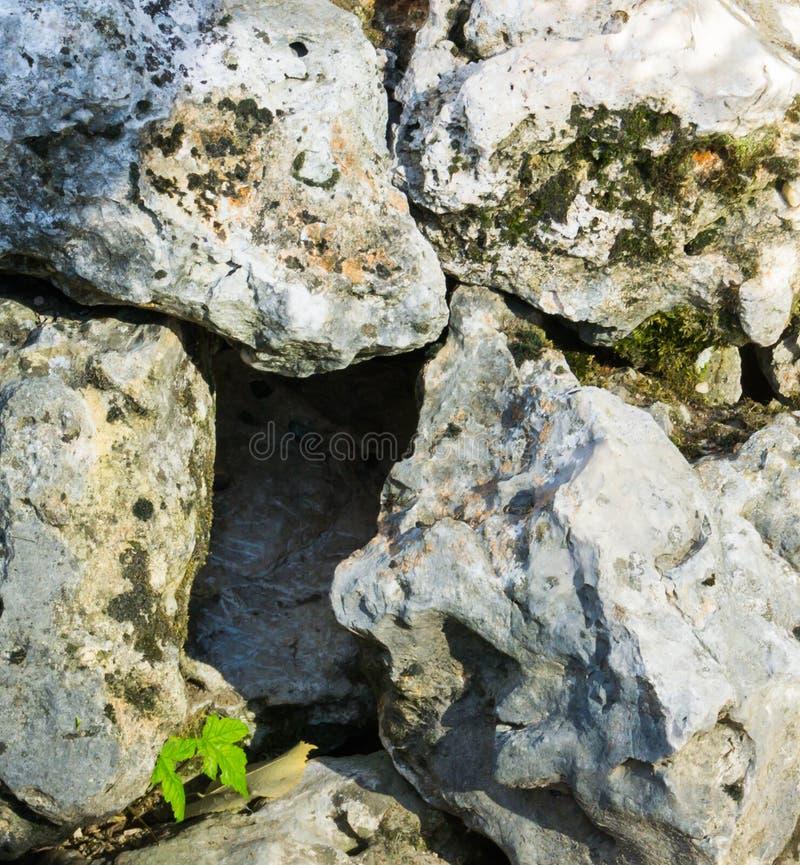 Furo vazio entre algumas rochas grandes com nada dentro da casa animal vazia fotos de stock