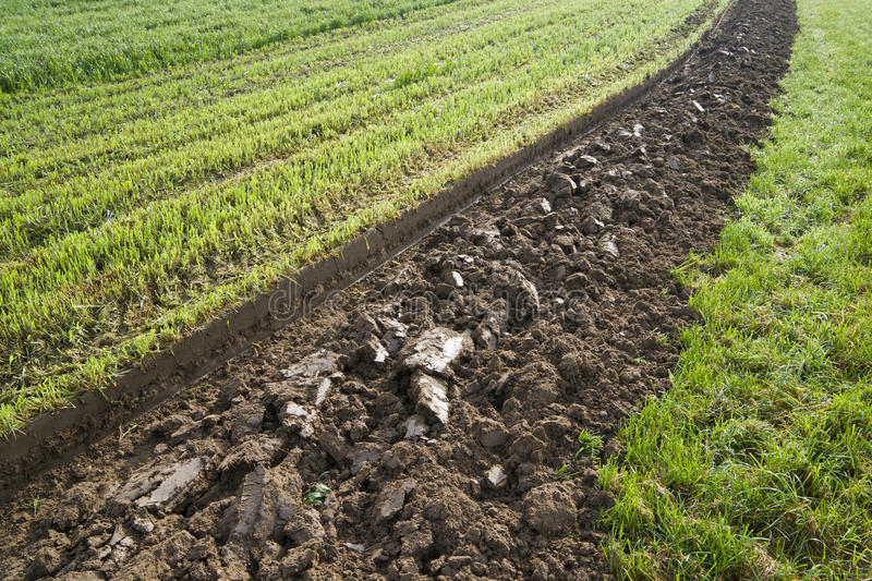 Furrow. First ploughed furrow on a field stock photos