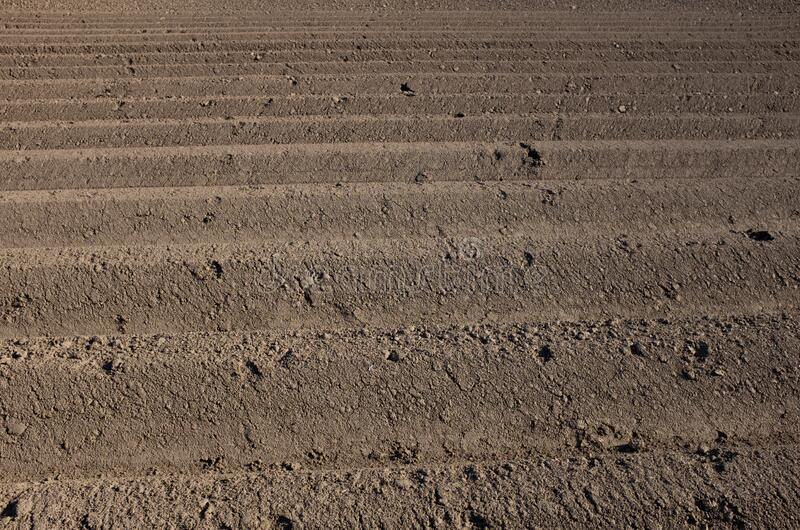 Furrows in the field royalty free stock photography