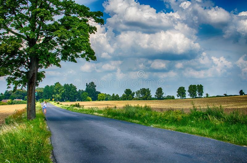 Furry clouds on a blue sky on a beautiful summer. Weather royalty free stock images