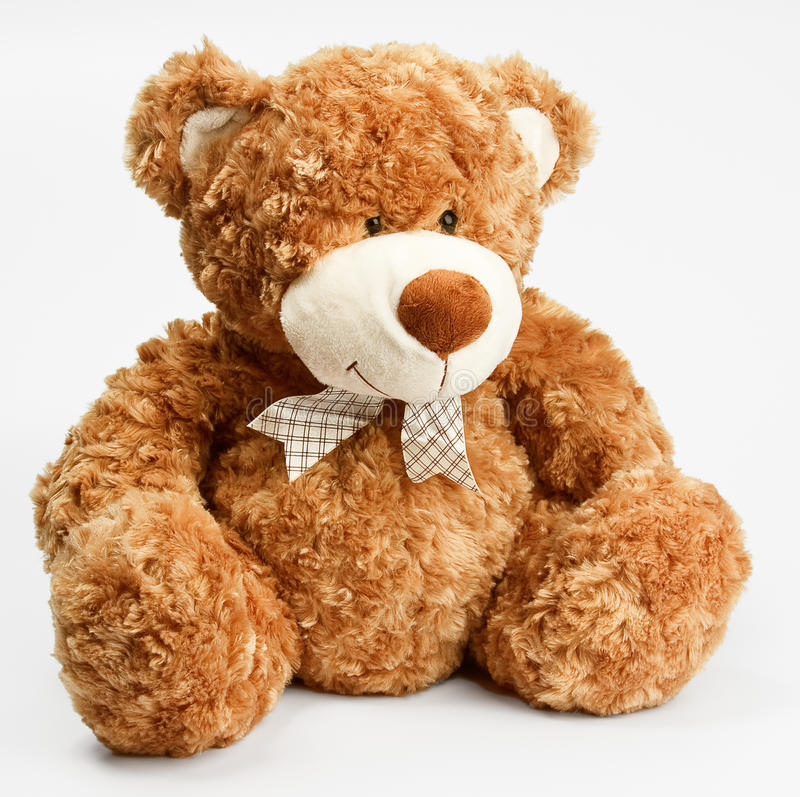 Furry teddy bear stock images