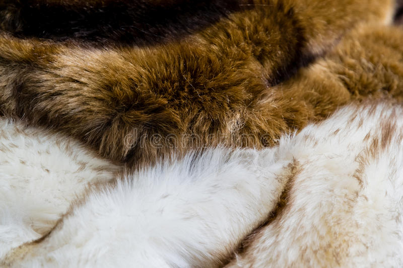 Furs. Pelts of brown and white fur royalty free stock photos