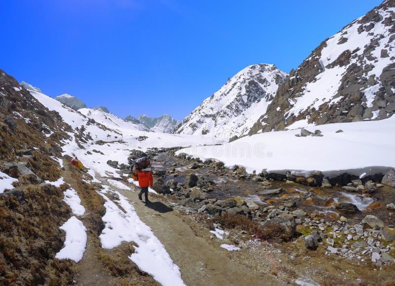 Furtianu sherpa przewożenia bagaż na wędrówce Everest Podstawowy obóz obraz royalty free