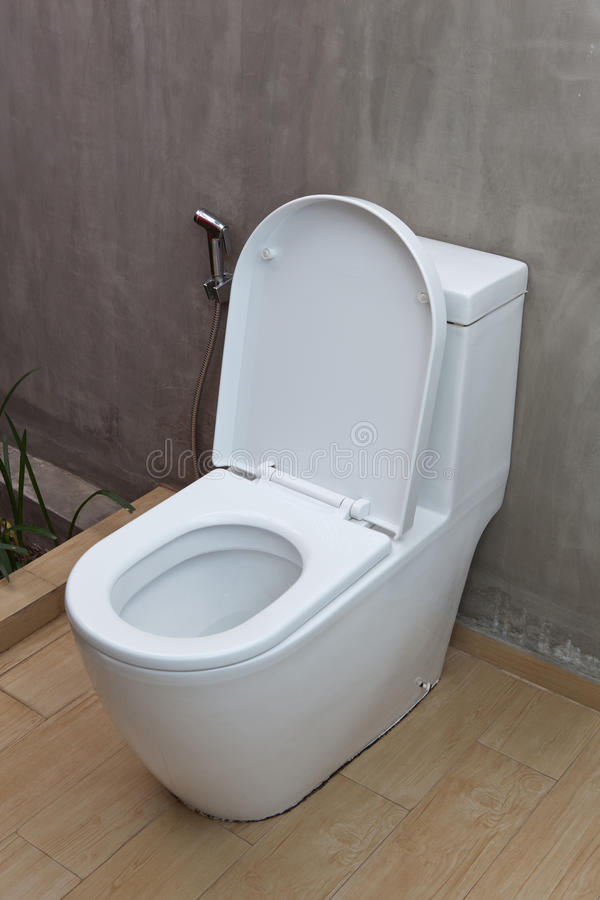 Fush洗手间和喷雾器 库存照片