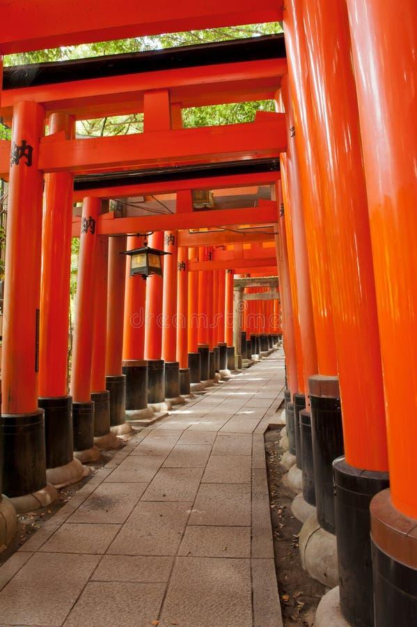 Download Fushimi Inari stock image. Image of culture, gates, portal - 23007425