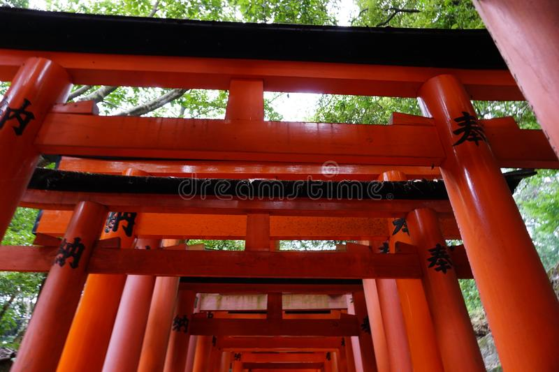TORII royalty free stock images
