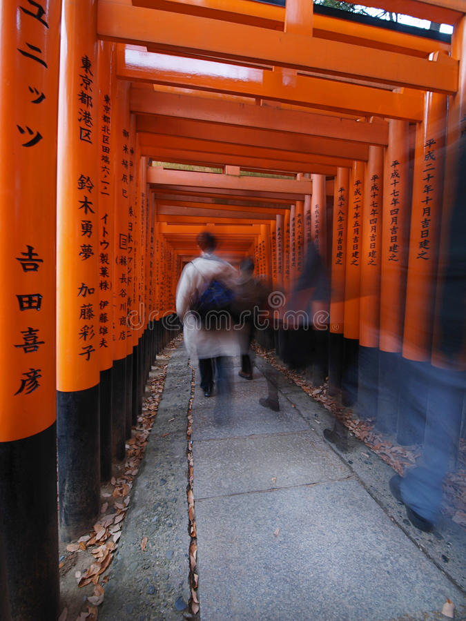 Download Fushimi Inari Shrine stock image. Image of fushimi, kyoto - 11669837