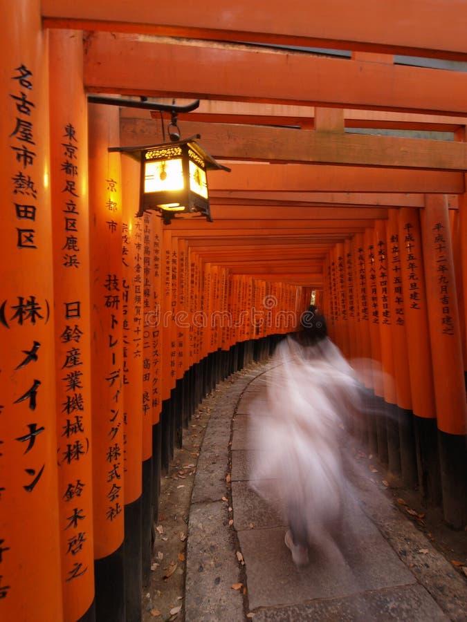 Free Fushimi Inari Shrine Stock Images - 11669844