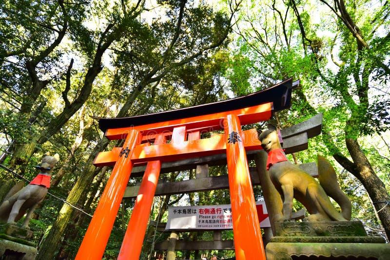 Fushimi Inari Taisha świątynia w Kyoto, Japonia zdjęcia royalty free