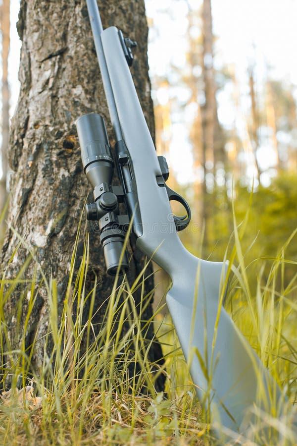 Fusil avec la vue télescopique photo libre de droits