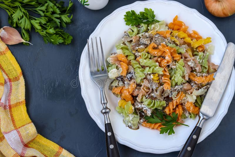 Fusilli multicolored pasta with vegetables in a white plate on dark background, top view, horizontal orientation royalty free stock photography