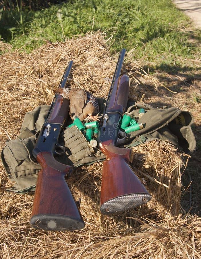 Fusils photographie stock libre de droits