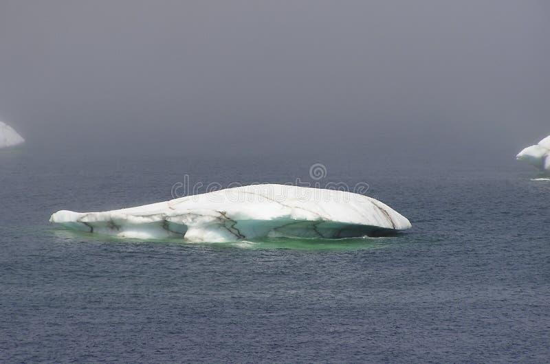 Fusione dell'iceberg immagini stock libere da diritti