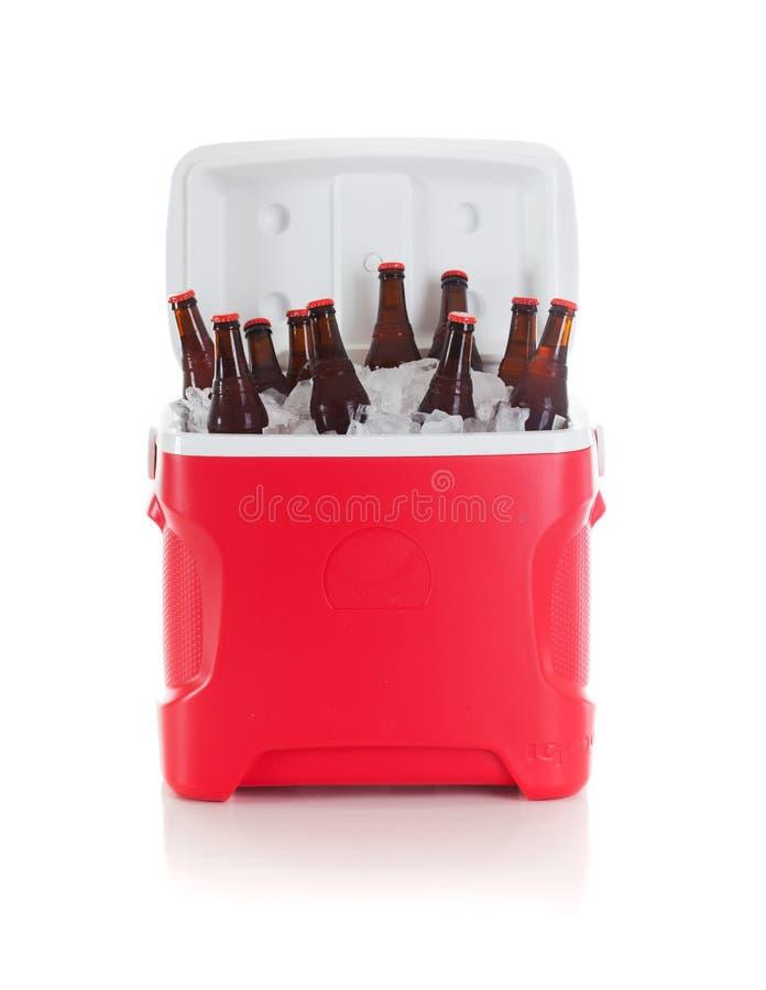Futbol: Napoju Cooler Pełno Piwne butelki Przygotowywać Dla przyjęcia zdjęcia stock
