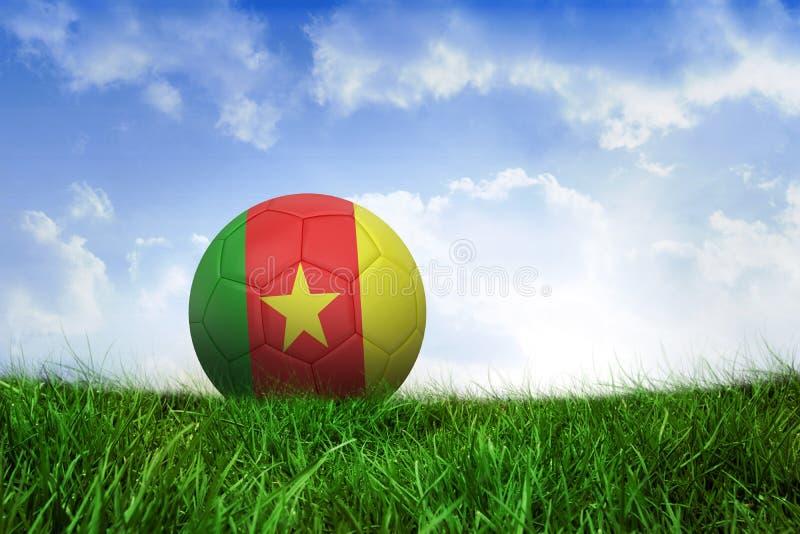 Futbol w Cameroon colours zdjęcie stock