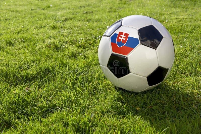 Futbol z flagą obrazy stock