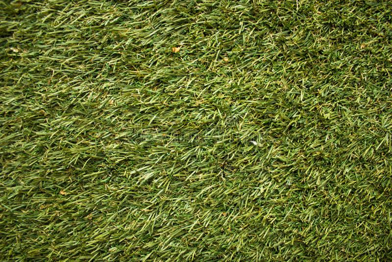 Futbolowa gazon tekstura, pole golfowe, naszywany gazon, zielenieje przygotowywającej trawy obrazy stock