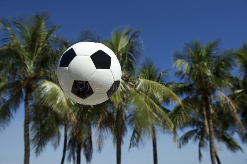 Futbolowa piłki nożnej piłki drzewek palmowych Brazylijska trawa obraz royalty free