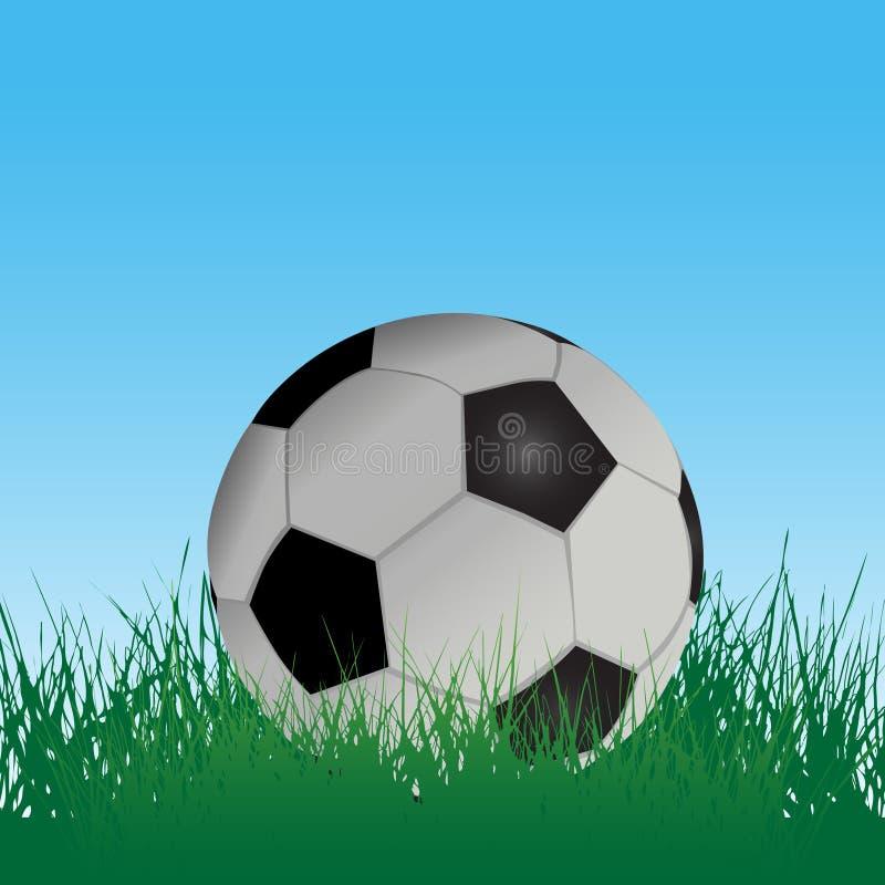 futbolowej pola piłka nożna trawy ilustracja wektor