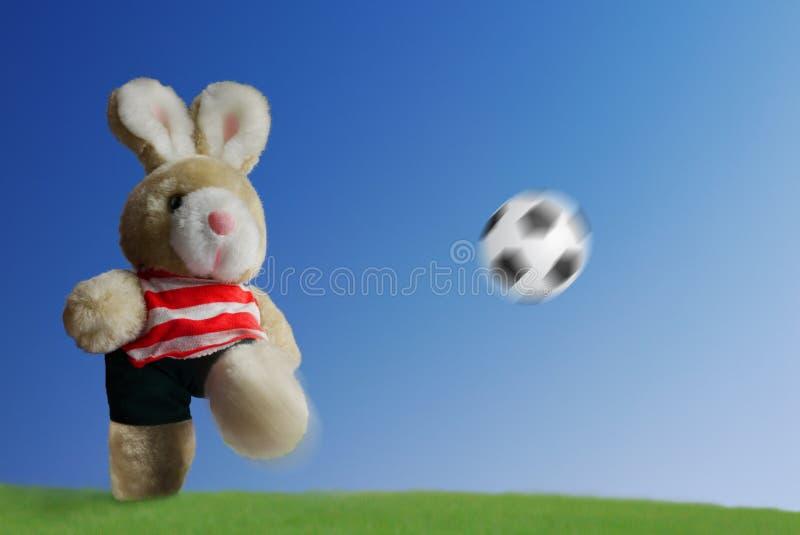 Futebol do futebol foto de stock