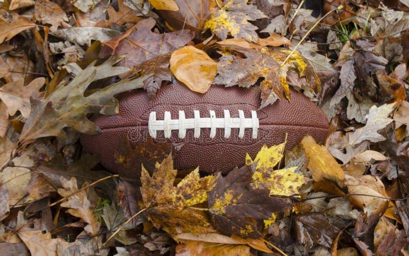 Futebol enterrado nas folhas da queda fotografia de stock