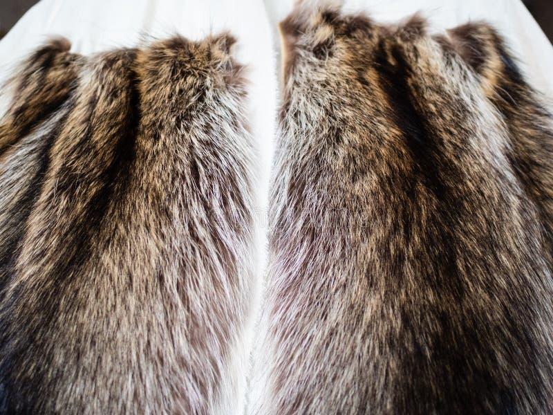 Futerko obrzuca zaszytego tekstylny układ zamknięty w górę obraz royalty free