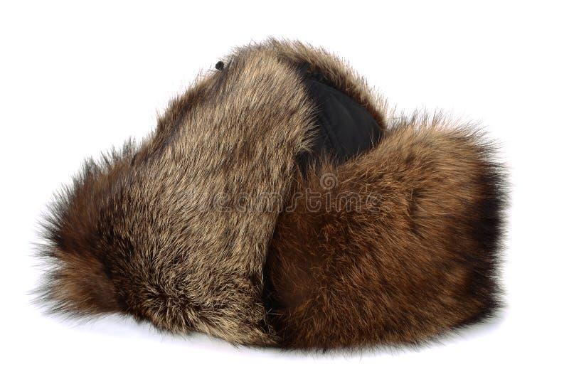 futerkowy kapelusz obrazy stock