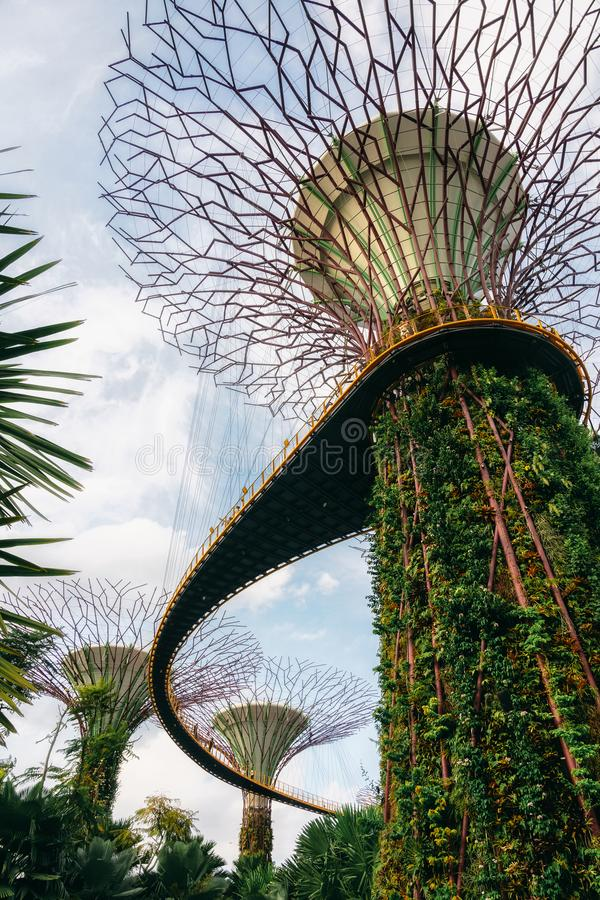 Futuristic giant trees and beautiful pink flowers in park. Future city concept. Singapore - April 2, 2018: Gardens by the bay. Futuristic giant trees and royalty free stock photography
