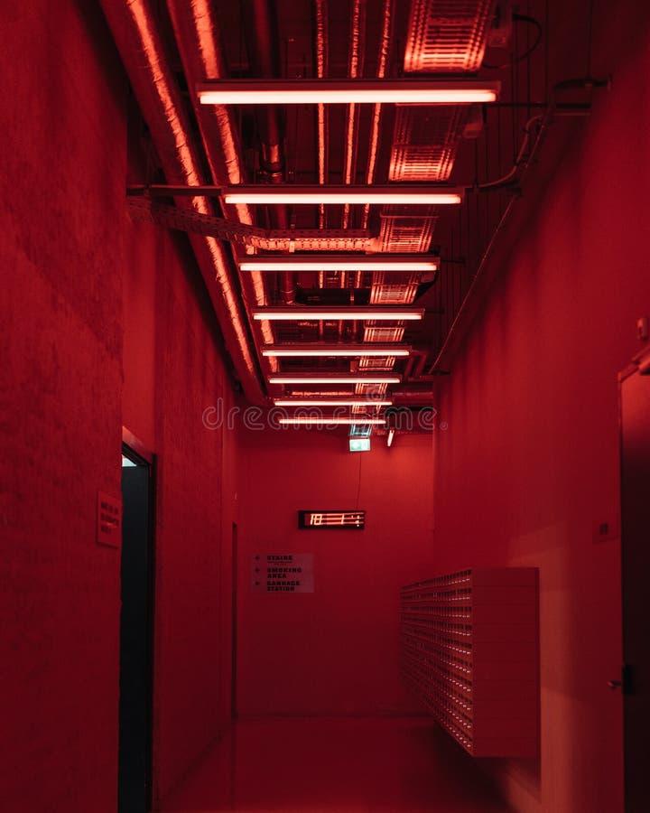 Futurystyczni czerwoni olśniewający neonowi światła w wejściu, lobby/ obraz stock