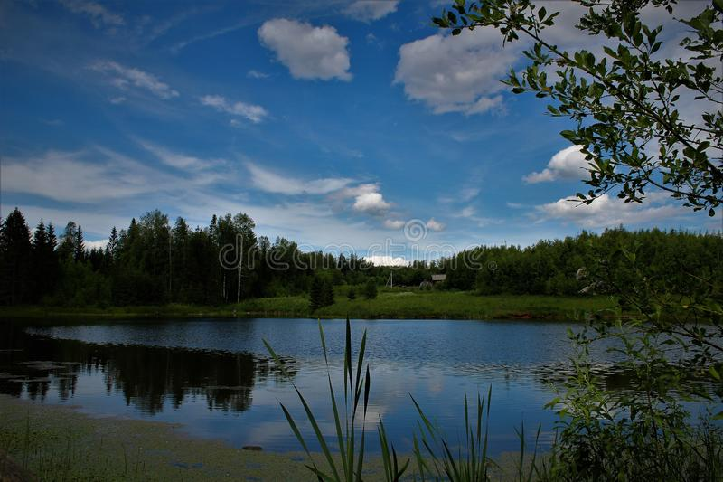 Fuuny krajobraz zdjęcie royalty free