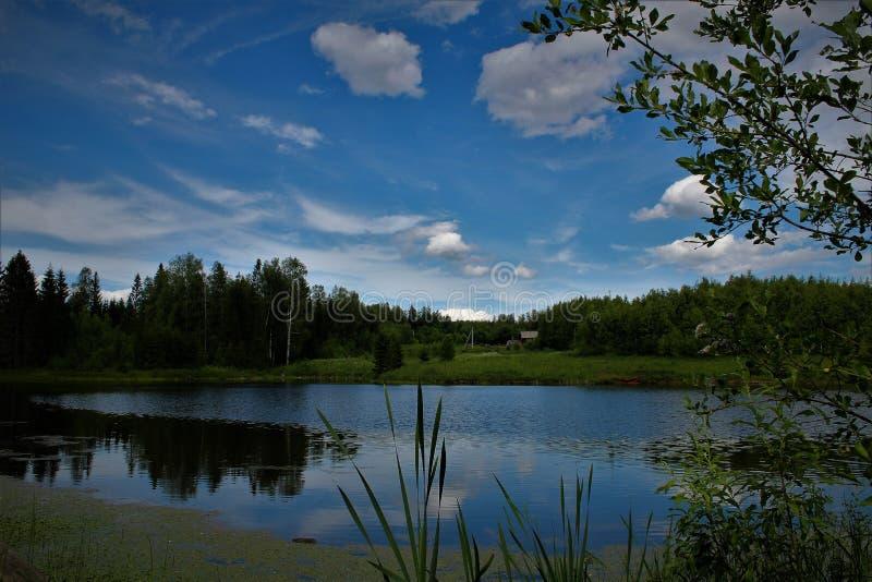 Fuunylandschap royalty-vrije stock foto