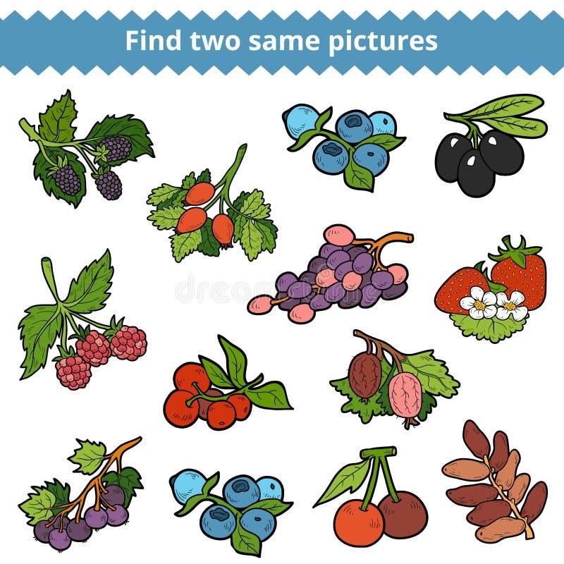 Fynd två samma bilder Vektoruppsättning av bär royaltyfri illustrationer