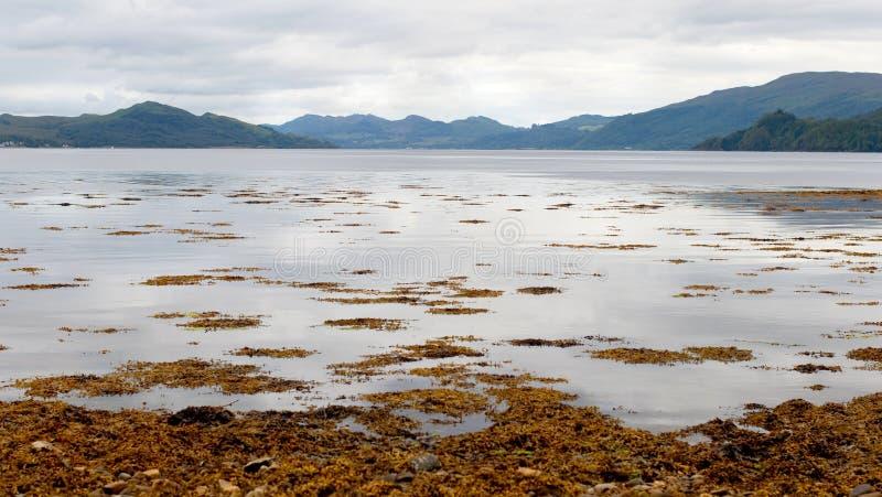 Fyne del Loch fotografia stock libera da diritti