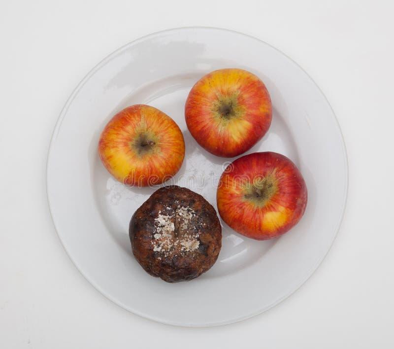 Fyra äpplen på en platta royaltyfri bild
