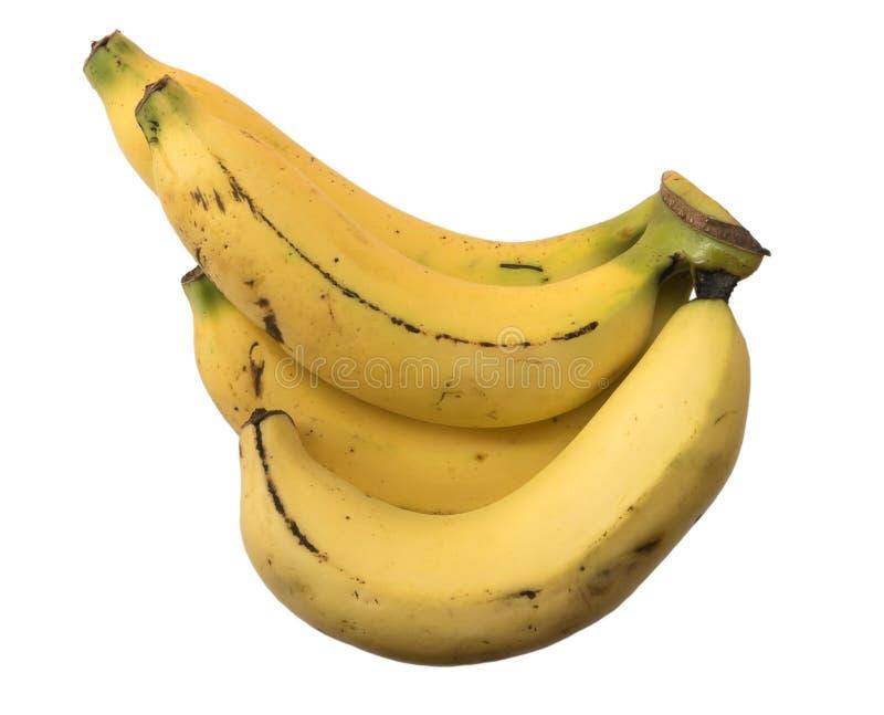 Fyra bananer som isoleras på vit bakgrund arkivfoton